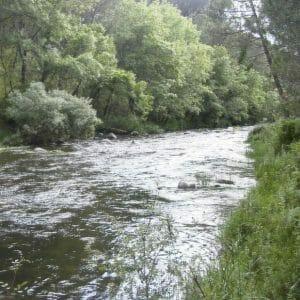 Tiétar River