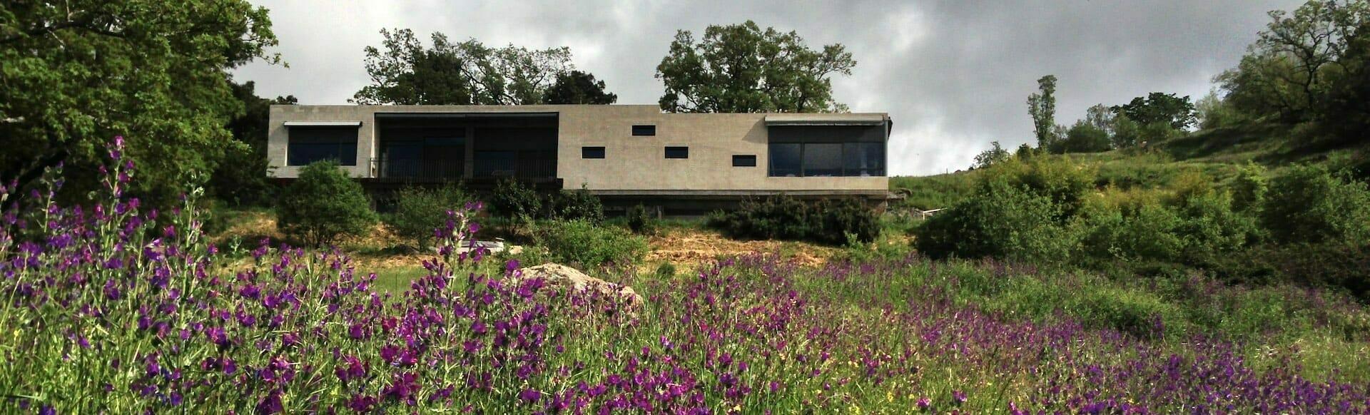 edificio sur flores